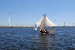 DSC05921 (Fotofreaky2013 (BUSY)) Tags: bunschotenspakenburg spakenburg boat boot ship schip water eemmeer zuidwal botter botterrace windmolens windmill zeilen zeil bunschoten