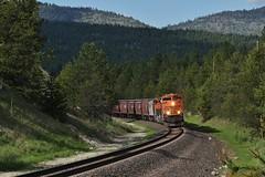 Hidden Gems - NFD 36, Fisher River Canyon, MT (MinnKota Railfan) Tags: rail railroad kootenai river subdivision burlington northern santafe rockymountains forest service 36 nfd36