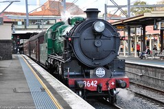 Transport Heritage Expo 2017 - Heritage Loco 3642  brings up the rear of the last train of the day. (john cowper) Tags: 3642 nswrailmuseum transportheritagensw transportheritageexpo centralrailwaystation redfernrailwaystation lasttrip nswrailways nswgr sydney newsouthwales