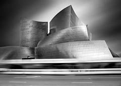 Disney Concert Hall (ADW44) Tags: bw monochrome fine art longexposure ndfilter bigstopper disney la losangeles city lines architecture frank gehry shapes