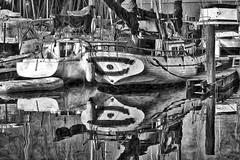 False Creek Harbour, Vancouver Canada. (kennethcanada1) Tags: harbour vancouver canada black white boats monoochrome travel kennethcanada