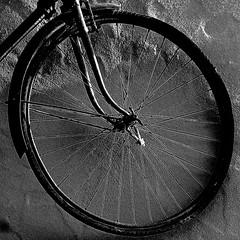 Rueda de Bicicleta, Andalucìa (pom.angers) Tags: panasonicdmctz30 spain españa andalucìa andalusia april 2017 palenciana malaga 100 150 200 bicycle bike wheel