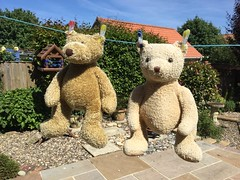 What terrible indignity for the bears. (Martellotower) Tags: boris marmaduke indignity wash drying clothes line clean garden
