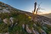 Sunrise - Schrattenflue (Captures.ch) Tags: 2016 alpenrose alps black blue brown clear cliffs gray green hike hiking hills juni lucern luzern morning mountains old orange pink red schrattenflue schrattenfluh schweiz sky sörenberg stones summer sun sunrise swiss switzerland tree violet white yellow