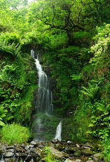 Hollow Brook Waterfall, Exmoor.
