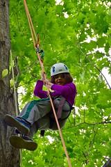 DSC_1316 (Montgomery Parks, MNCPPC) Tags: popupinmontgomeryparks bethesda treeclimbing climbatree tree climbingtrees kids children boys girls arborists elmstreeturbanpark spring may may2017 leaves treetrunks toddler