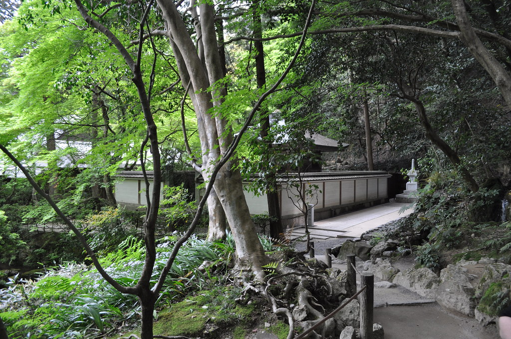 The world 39 s most recently posted photos of d5000 and for Jardin kyoto