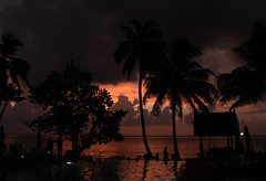 Whispering Palms Resort at Kumarakom (RossCunningham183) Tags: whisperingpalmsresort kerala india southindia backwaters kumarakom sunset resort