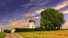 Windmill (BE) (YᗩSᗰIᘉᗴ HᗴᘉS +6 500 000 thx❀) Tags: moulin moulindefrenne windmill landscape sky nice clouds greeen red blue