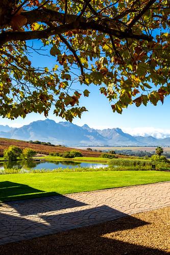 Stellenbosch_BasvanOort-2