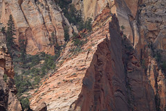 Cliffs of Zion (Dancing.With.Wolvez) Tags: canyon zion park weather walls sand sandstone red orange spring summer fall hiking cliff tree layers compression shadow