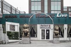 Dining in Style (Hamburg PORTography) Tags: asian asiatisch restaurant front rmc tokina 24mm 128 minolta md mount quenox focal reducer sr fuji xmount fujifilm xe1 2017 hoonose68 sgrossien grossien hamburg adapted adapter lens objektiv focalreducer manual mahlzeit againstautotagging