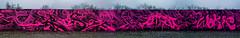 Artists of the complete wall: Sier, Thiago, Spectre, Side, Moter, Diaz, Baske, Mose, Wokie, Fuse (pharoahsax) Tags: graffiti karlsruhe ka pmbvw bw baden württemberg süden deutschland kunst art streetart street urban urbanart paint graff wall germany artist legal mural painter painting peinture spraycan spray writer writing artwork tag tags worldgetcolors world get colors combo farbschall hip hop kulturzentrum black magenta beast