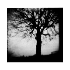 (yulia_adamova) Tags: ilford lomography film analog strange diana monochrome