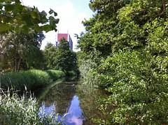 Suburban Serenity (sander_sloots) Tags: suburban vlaardingen holy district water pond trees reet woonwijk sloot vijver bomen riet