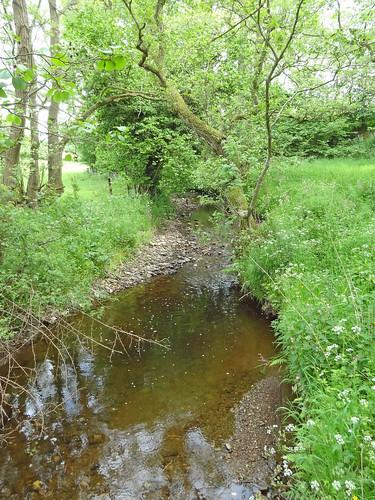 The Criftin Brook
