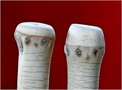 Two 'Nife' People (jesse1dog) Tags: macromondays pareidolia macro knives bamboo gm1 sigmaart60mm sigma 60mm extensiontube tabletop fruitknife eyes hats