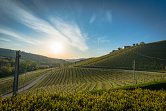 downvalley sunset (36 of 1) (sassiitalytours) Tags: marchesidigresy piemonte wine vino langhe barolo barbaresco italy italia