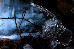 Icy Fall (3) (Mahmoud R Maheri) Tags: ice frozenwater iran sepidan frozen winter river bubbles twigs ardakan