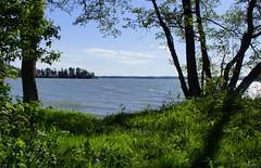 Summer green & blue (Joni Mansikka) Tags: summer nature sea shore sky clouds trees outdoor landscape blue green sauvo suomi suomi100 finland finland100 balticsea tokinaaf2880mmf28