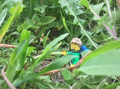 8. Bushwhacking (JD430w) Tags: lego hiker hiking outdoors adventure minifigure forest bushwhacking bigfoot
