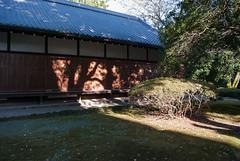 UENO_PARK_TOKYO_103-0184 (laurencemackman) Tags: tokyonationalmuseum uenopark taitō tokyo japan uenokōen autumn honshu meijiperiod ニコン nikon d60