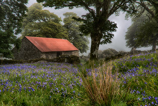 Elmsworth Barn Dartmoor