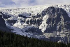 Avalanche (Susan.Johnston) Tags: columbiaicefield avalanche glacier jaspernationalpark travelalberta