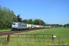Metrans: 386 029, Breda Prinsenbeek (NL) (Alexandre Zanello) Tags: 386 metrans traxx bombardier ms2e f140 breda prinsenbeek paysbas netherlands