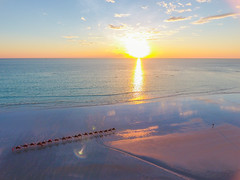 cable beach sunset (Morris Lu) Tags: cablebeach camel sunset drone dronephotography justanotherdayinwa broome ocean beach australia thisiswa westernaustralia 澳洲