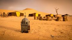 Douceur du désert... (#ferretmonamour) Tags: maroc bivouac désert dune sable paysage sahara