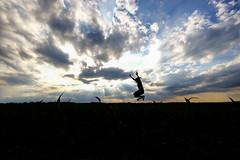 In The Spotlight (CoolMcFlash) Tags: landscape person woman jump sky dramatic cloud cloudscape nature silhouette loweraustria austria fun weather fujifilm xt2 light landschaft frau springen sprung himmel dramatisch wolken wetter bewölkt wolkenlandschaft natur kontur niederösterreich österreich spas licht fotografie photography rays strahlen sonnenstrahlen sunlight sonnenlicht xf 1024mm f4 r ois