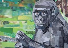 Portrait of a Gorilla (Megan Coyle) Tags: gorilla gorillaart gorillacollage ape primate zooart zooanimals art collage collageart paperart papercollage illustration magazinecollage cutandpaste paintingwithpaper megancoyle