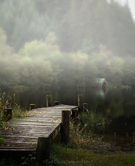Misty morning (pauls1502) Tags: lochard scotland scottishhighlands landscape loch trossachs pier misty trees autumn argyll stillness