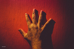 Hand. (Ge Sales (P.A Films)) Tags: hand mão colorful contraste fineart