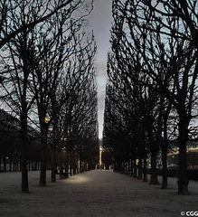 There is always  a light (C G G) Tags: paris france park night light cold winter