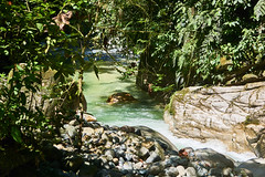 Laguna Azul 2 - 21-05-17 (michel-in-ecuador) Tags: tena ecuador laguna azul rainforest oriente dschungel tree water lake river stream sony alpha 6000 amazonas rio napo