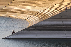Duisburg, Germany (gstads) Tags: duisburg germany nrw nordrheinwestfalen northrhinewestphalia architecture steps stairs staircase river water lines curves geometry innenhafen port harbour rhein rhine ruhr