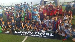 VII Copa Federación Fase*** Alevín, Benjamín y Prebenjamín