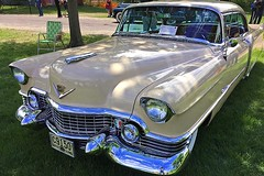 Cadillac Day (16) (AntyDiluvian) Tags: boston massachusetts brookline larzanderson automuseum vintagecars vintageautos vintageautomobiles cadillacday lawn 1954 coupedeville grille