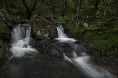 Rincones del bosque (Explore) (Jose Cantorna) Tags: seda bosque waterfall water agua cascada