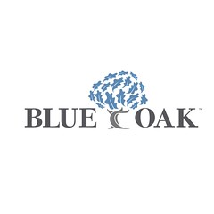 Blue Oak Smaller Logo (Blue Oak Outdoor) Tags: blueoak blueoakoutdoor blueoakoutdoorfurniture outdoor furniture patiofurniture outdoorfurniture