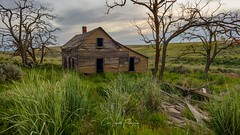 Remember The Time (Chris Lakoduk) Tags: house abandoned home derelict landscape country homestead old color sky foreground background grass green trees place remember the time washington state chris lakoduk