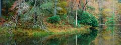 Otter Lake - Ektar 100 (magnus.joensson) Tags: usa autumn blue ridge parkway october virginia panorama hasselblad xpan 90mm kodak ektar 100 film handheld c41 24x65 visitusa