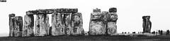Stonehenge - Amesbury - England (TLMELO) Tags: monument london londres bus ônibus red games vermelho street scene inglaterra england unitedkingdon reinounido trafalgar nelson lordnelson bluesky charingcross themall buckinghampalace greenpark stjamesspark white branco bigben clock relógio time tempo sino bell westminsterbridge westminster bridge palace palaceofwestminster riverthames river thames rio tâmisa turistas tourist sky u2 parliament parlamento british ferriswheel rodagigante londoneye eye jubilee queen elisabeth 60 years jubileu aquário aquarium people westminsterabbey panorama londonstreets nottinghill fiat500 fiat500inmini´sland portobelloroad thegherkin