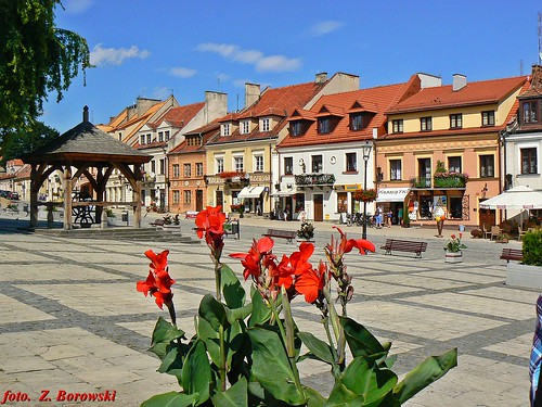 Sandomierz - the Old Market