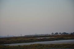Paseando por los esteros de Río Arillo #SanFernando (Manelar1) Tags: esteros ríoarillo sanfernando sunset flamencosrosa puestasdesol