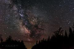 The Galactic Center (-> LorenzMao <- Catching up) Tags: httpwwwlorenzmaophotographycom galacticcenter milkyway quebecmilkyway quebeccanada canada astrophotography astro galacticcore star nightphotography nightouts