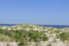 Ocean Grove NJ (Beautification Syndrome) Tags: ocean oceangrovenj boardwalk vacation solace sky sea beach dune
