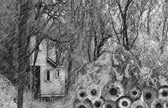 Photo Final-PS (skye-skye) Tags: photoshop photo final edit collage mountain crying tears eyes rain beginner exam project cry hillside crawlspace cabin woods blackandwhite monochrome